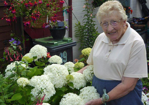 Jean and her Hydrangea 'Annabelle'