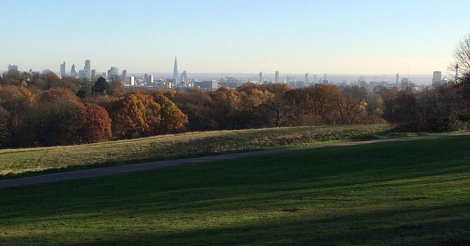 A view of London from Hampstead Heath