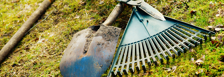 Exceptional Garden Tools Needing A Vlean