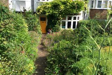 front garden now