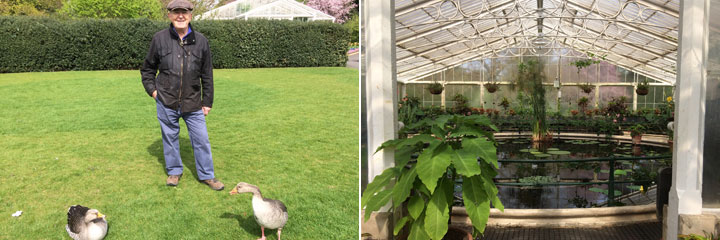 gees and lily house at Kew