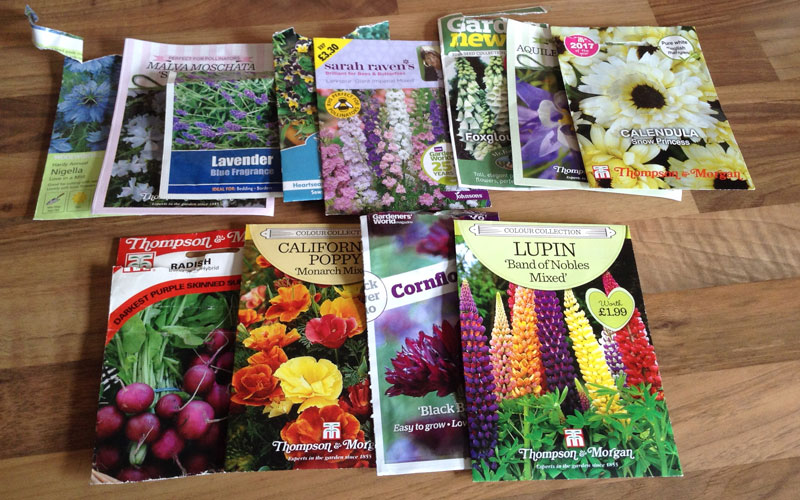 Amanda's various seed packets - September 17