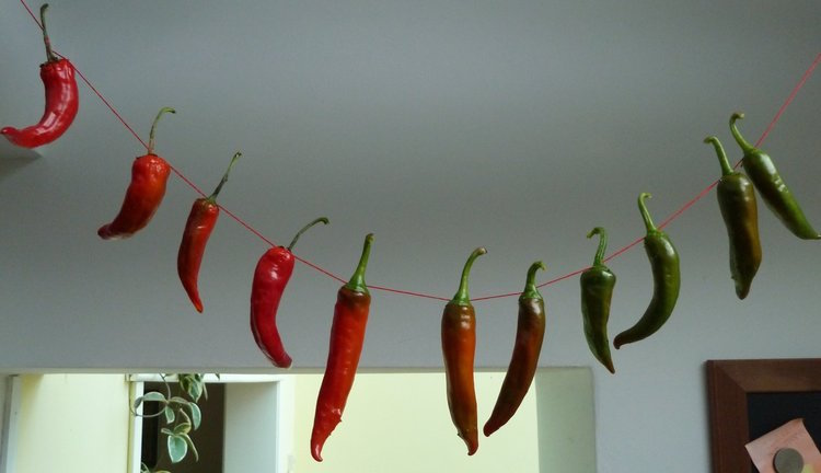 jane perrone's chillies