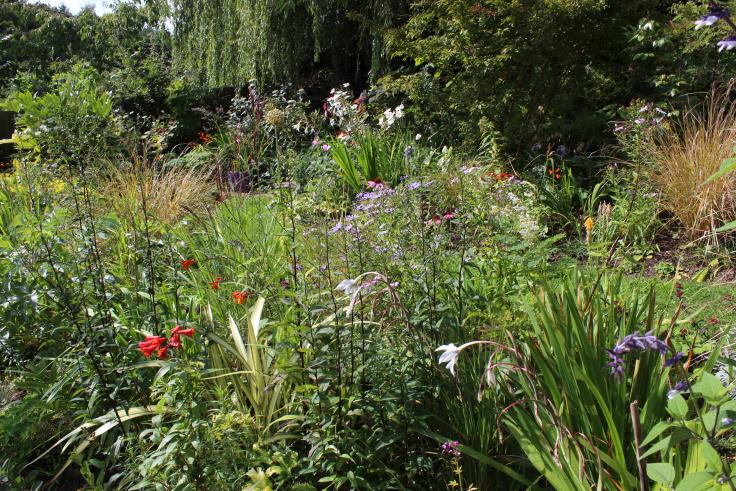 14 years of the patient gardener's work