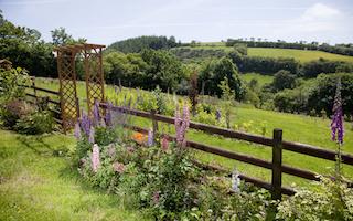 9 wonderful Welsh garden bloggers