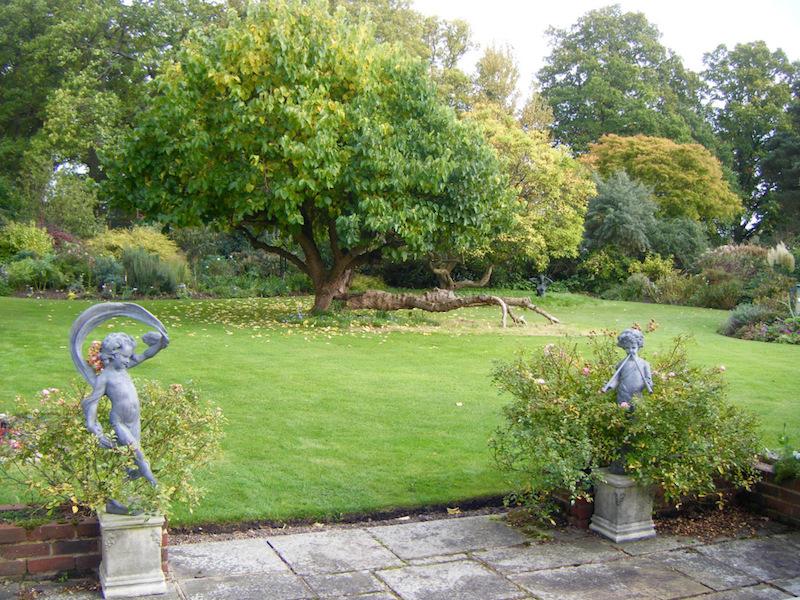 garden gate is open timber hill