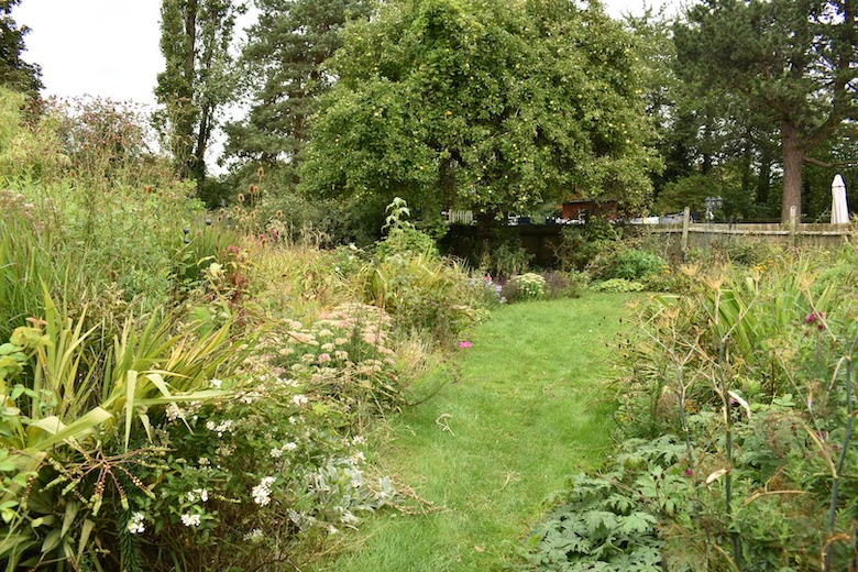 Blackberry Garden's large garden