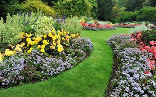 6 inspiring garden blogs