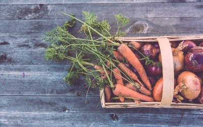 Grow your own meals – these 9 Instagrammers will show you how