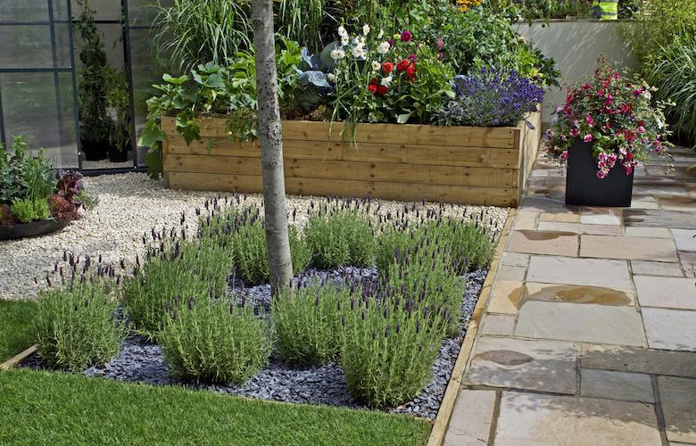 Lavender and gravel garden planting scheme