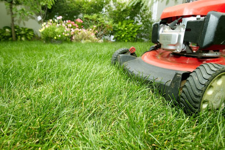 Closeup of lawnmower and cutting grass