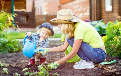 Top tips for family gardens