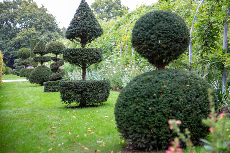 Topiary in a garden