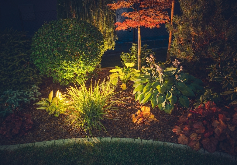 Garden at night with lighting to illuminate