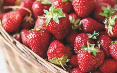 Strawberries masterclass: best expert content