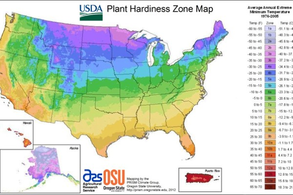 USDA Plant Hardiness Zone Map with colors to note each zone.