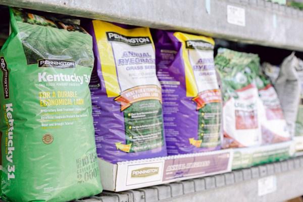 Pennington turfgrass bags on a shelf; choosing the best turfgrass for your lawn.