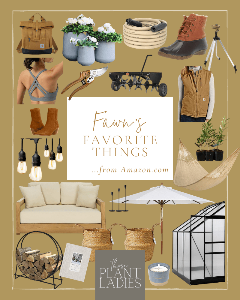 Fawn's favorite things from Amazon, organized in a collage.