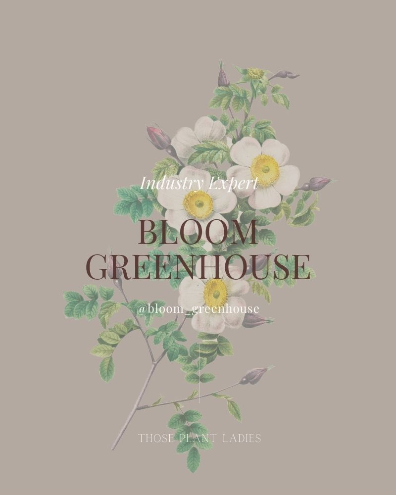 Bloom Greenhouse graphic text featured on Those Plant Ladies.