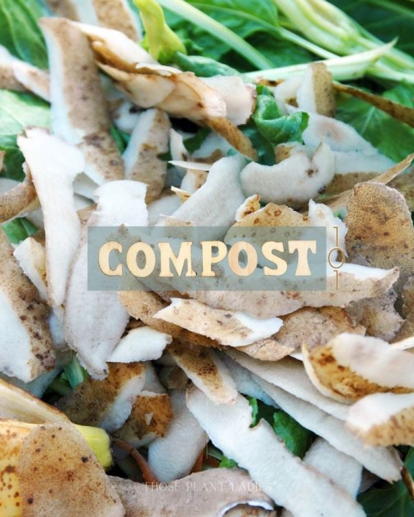 Food scraps for composting; blog post from Those Plant Ladies.