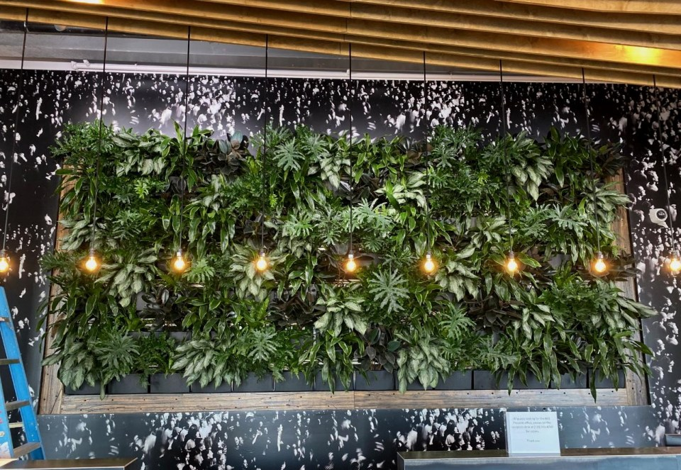 Living walls from Rocky Mountain Living Walls, featured on the Those Plant Ladies blog.