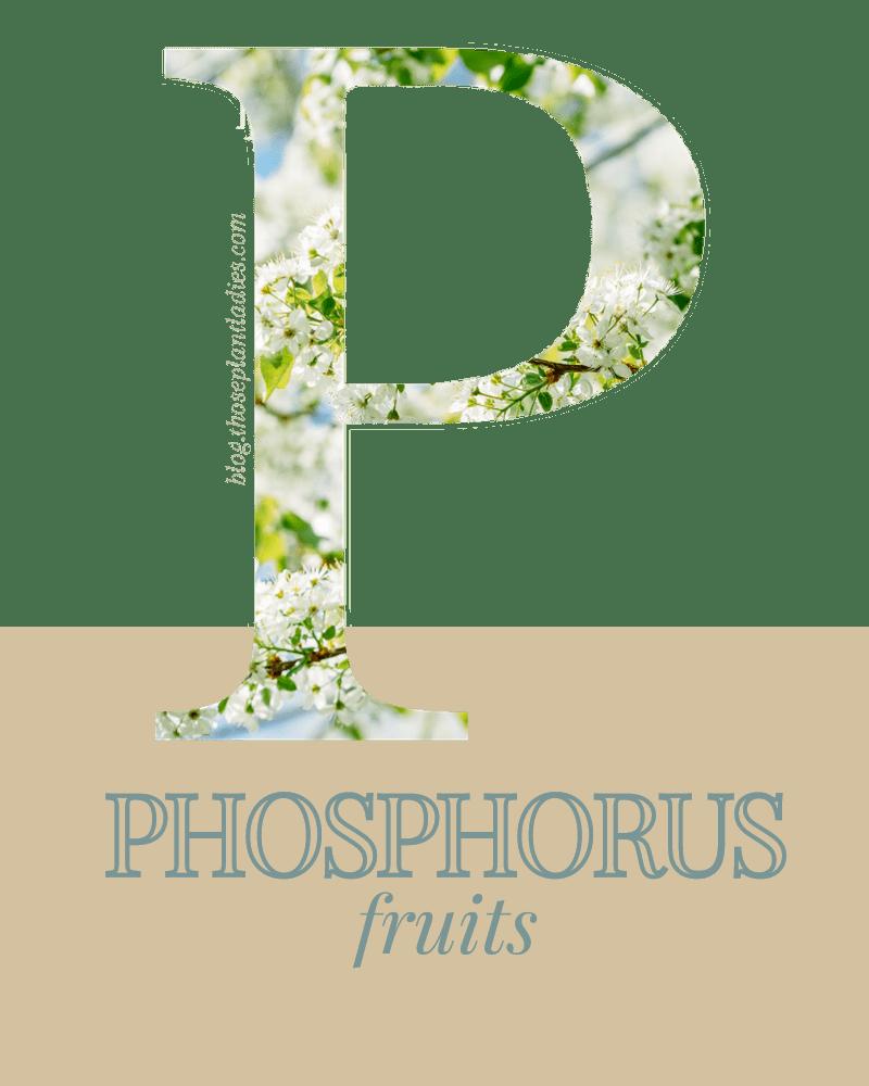 Phosphorus fertilizer is for the fruits.