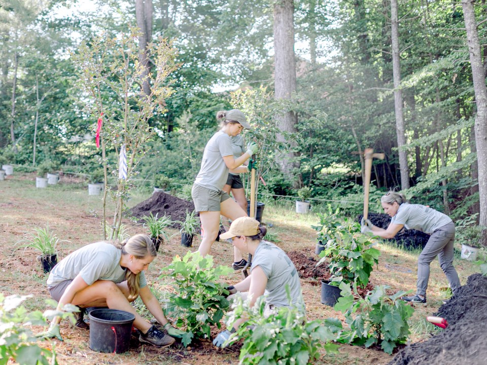 The crew of Those Plant Ladies working the landscape installation for The Blooming Estate.
