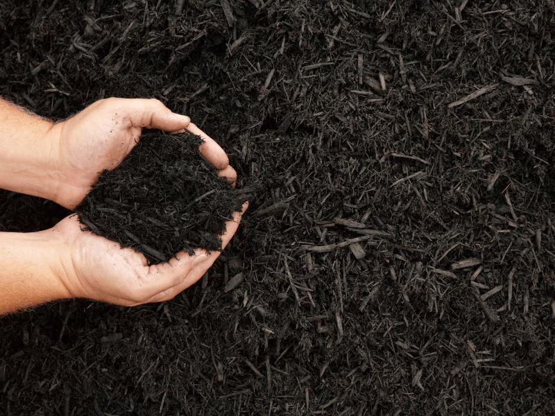How to pick the right soil for your project by Those Plant Ladies.
