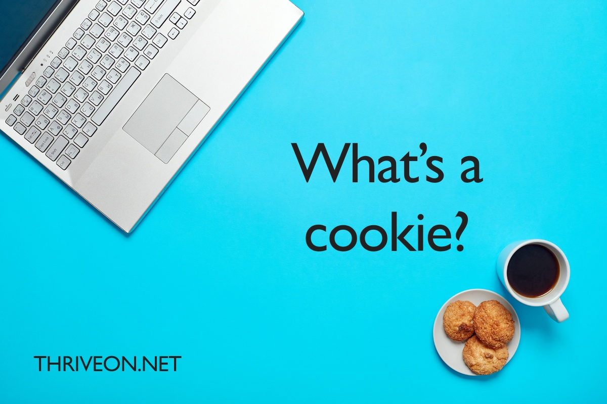 What Is A Cookie? Internet Cookies Explained