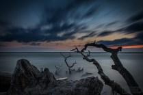 Fischland-Darss-Zingst_2018_14