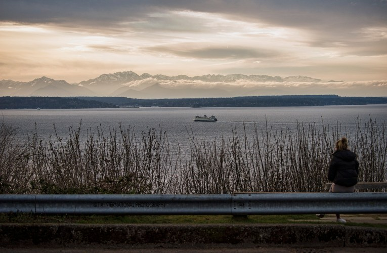 Quarantined City: Seattle Under Siege by the Coronavirus (Part II)