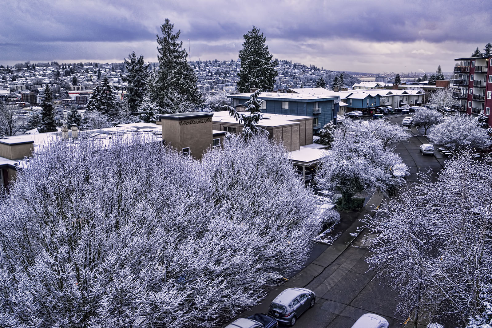Magnolia & Queen Anne neighborhoods (Seattle) in the snow. (January 13, 2020).