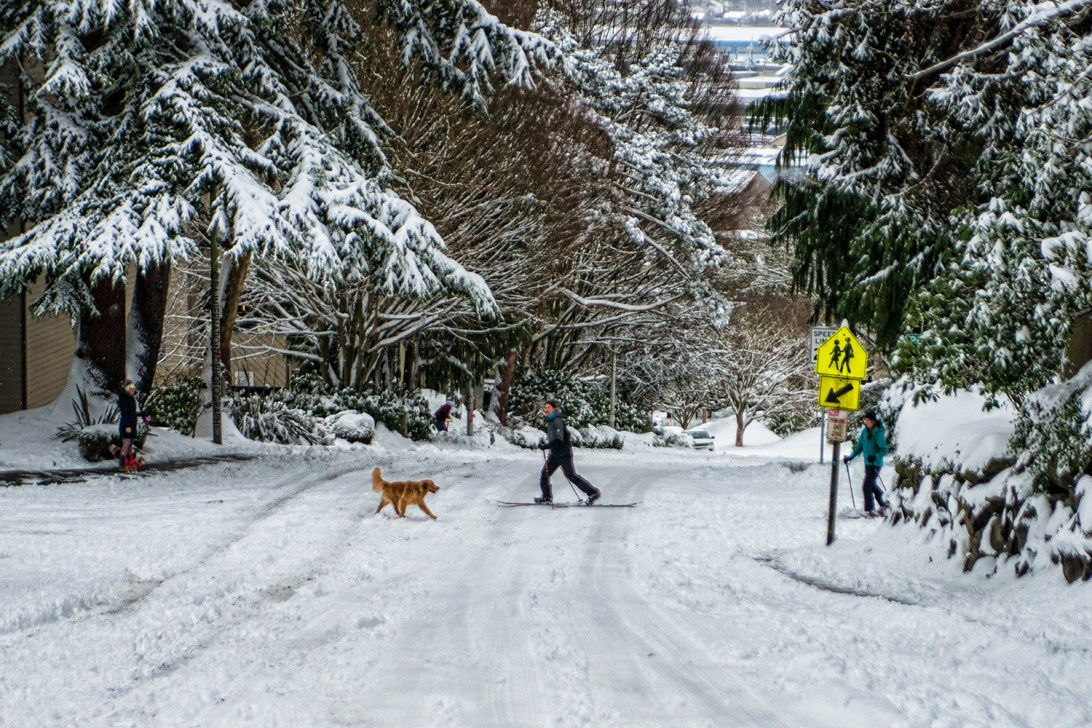 Skiing across Manor Place, Magnolia, Seattle (February 13, 2021).