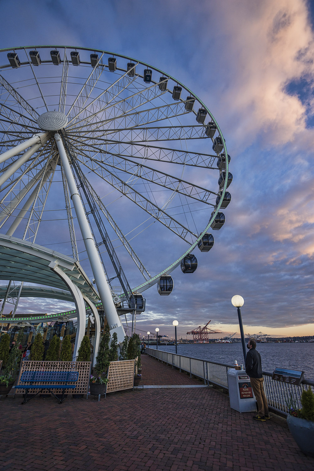 A pedestrian observes the Seattle Great Wheel at Pier 57.