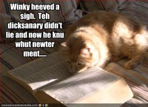 funny-pictures-cat-reads-the-dictionary