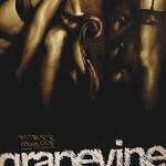 Grapevine-25