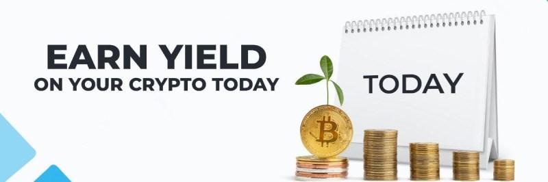 earn yield