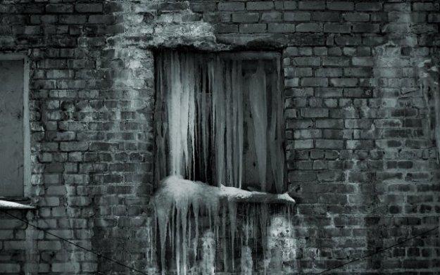 zimnee