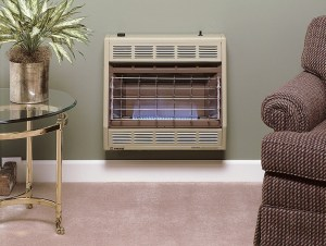 Image of vent free gas heater