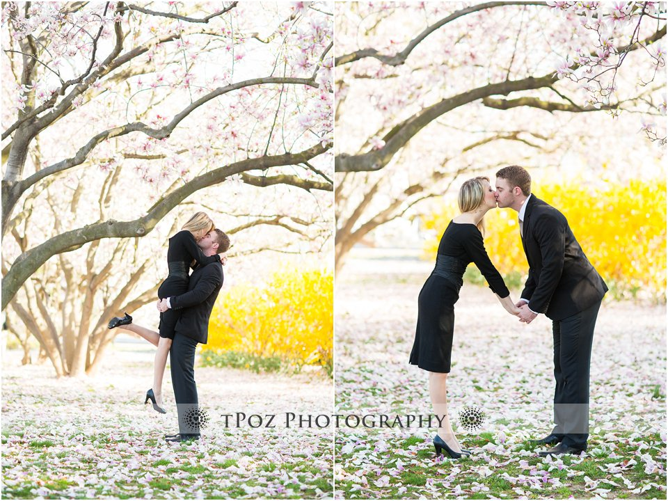 DC Cherry Blossom Engagement Photos