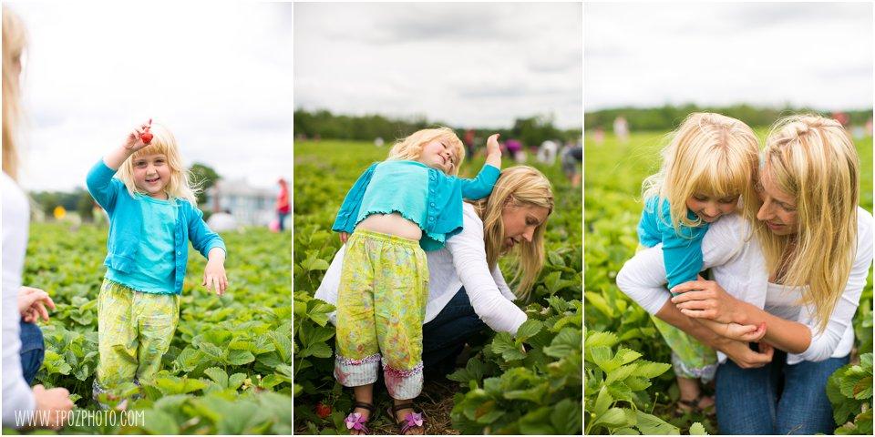 Strawberry-Picking_0016.jpg