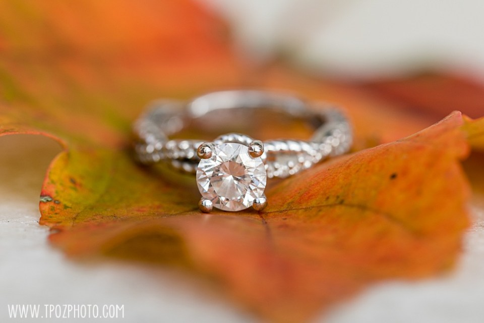 Engagement ring on a leaf  • tPoz Photography  •  www.tpozphoto.com