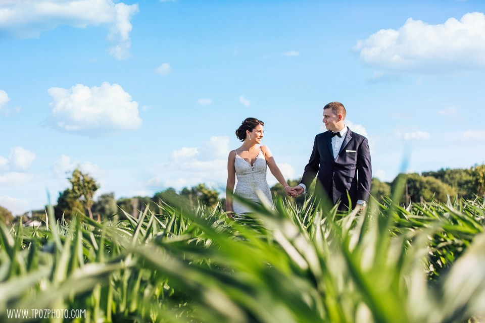 Bride and groom in the cornfields at their Rosewood Farms wedding