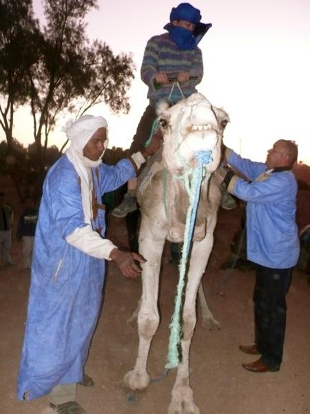 M'hamid-Sahara-Camel-Trek