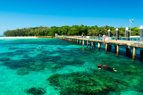 Things to See and Do in Cairns, Australia.