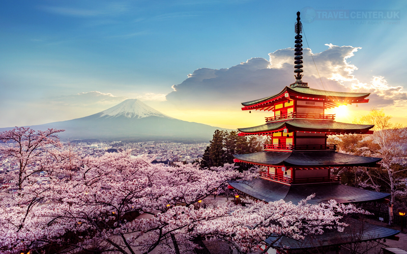 Places to visit with your family - Japan