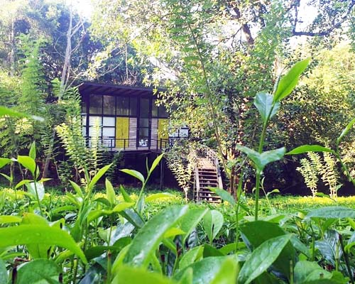 Boutique Hotels in Sri Lanka - The Country House Chalets (Galle)