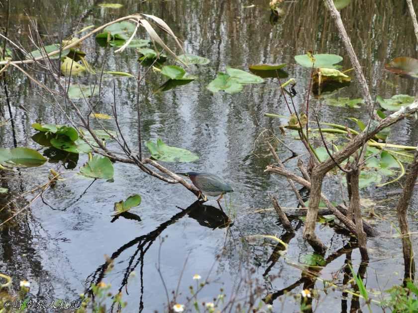 大沼澤地國家公園 7