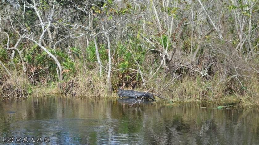 大沼澤地國家公園 25
