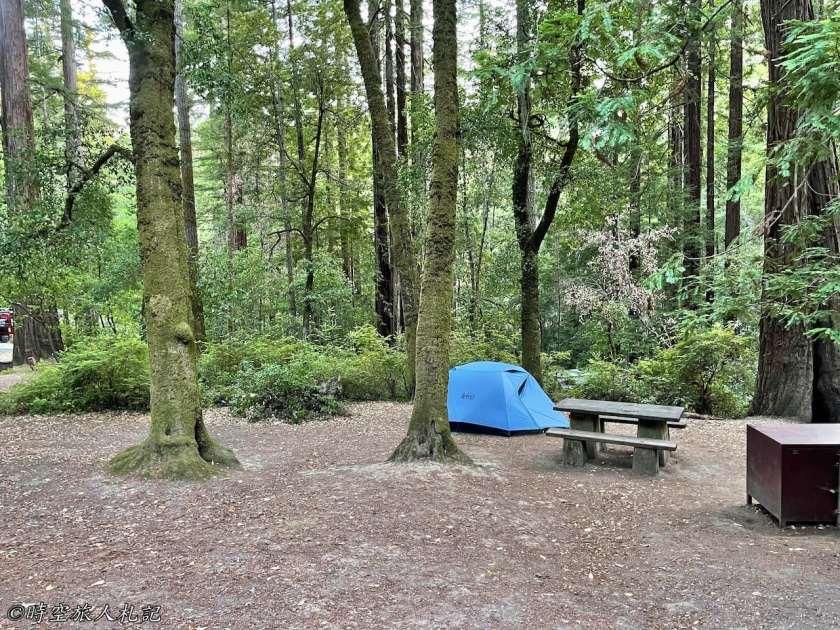 Portola redwood state park 露營